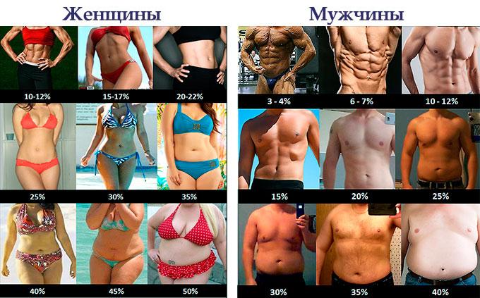фото процент жира